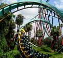 rollercoaster5.jpg